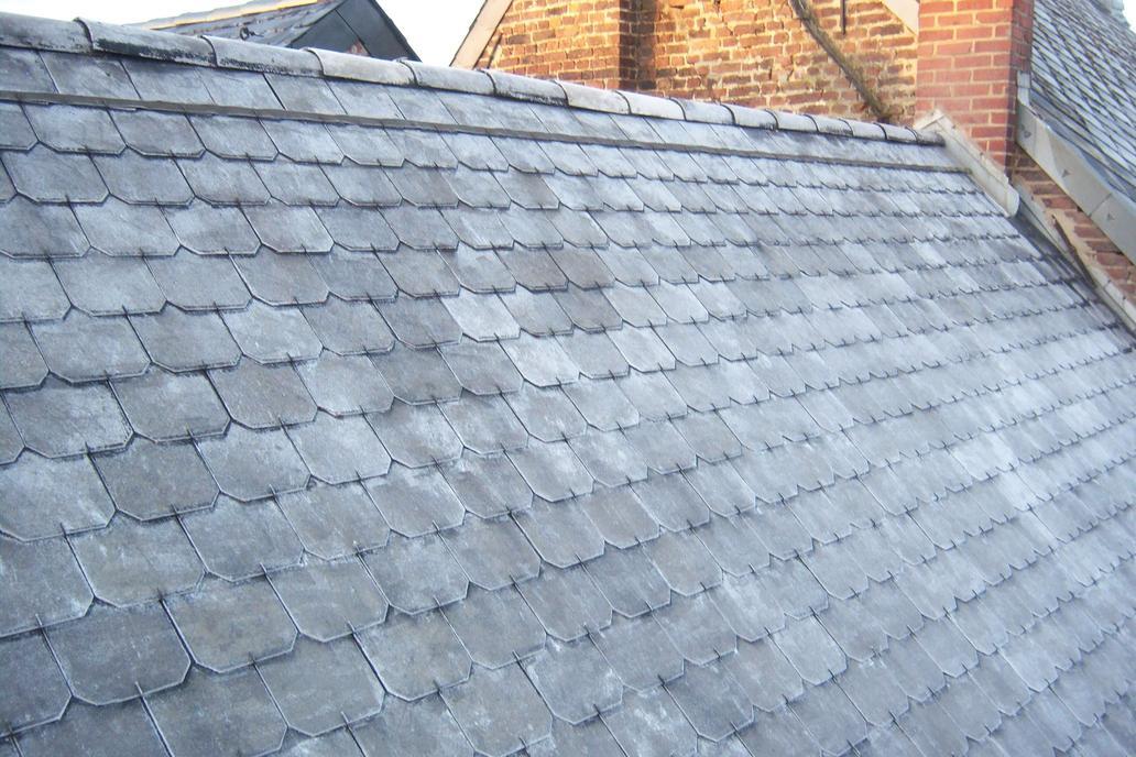 Mousse nettoyage de toit entrepreneur ma onnerie for Entrepreneur terrasse